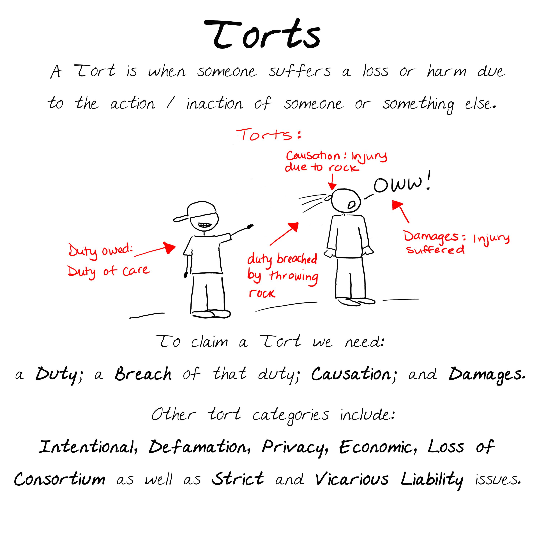 Torts 0.0